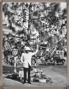 Gran Canaria - Parque San Telmo por Navidad año 1950.... #fotoscanariasantigua #tenerifesenderos #fotosdelpasado #canariasantigua #canaryislands #islascanarias #blancoynegro #recuerdosdelpasado #fotosdelrecuerdo