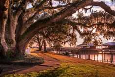 For a good vantage point in Fairhope, #Alabama, stay at one of the town's bay-view B&Bs, such as Emma's Bay House ~This is a beautiful little park!