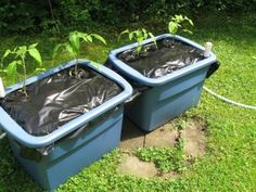 DIY- make your own earthbox gardening container for tomatoes and other veggies this summer & Great DIY make your own tomato Earth Box | Gardening Usual and ... Aboutintivar.Com