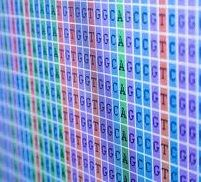 "Next Generation Sequencing has the capability ""to detect thousands of different genetic"" patterns, including sex, hair color, eye color, and ..."