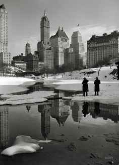 New York Winter photo New York Savoy Plaza and Plaza hotels from Central Park. New York Poster, Old Pictures, Old Photos, Vintage Photos, Monthly Pictures, Vintage New York, Central Park, New York Photographie, Photo New York