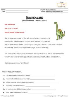 This worksheet includes interesting facts about the Brachiosaurus. Students read the text and then answer the study questions.