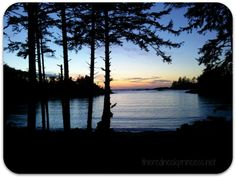 Ucluelet Sunset - the west coast of Vancouver Island. Vancouver Island, British Columbia, West Coast, Places To Go, Canada, Sunset, Photography, Outdoor, Beautiful