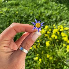 """𝘼 𝙎𝙚𝙣𝙝𝙤𝙧𝙖 𝙙𝙤 𝙈𝙤𝙣𝙩𝙚 ® on Instagram: """"""""..nem tudo são flores, mas quando for regue.."""" Bom diaaaa alegria 💚 . #flores #floresdocampo #vida #vidaboa #vidaverde #jardim…"""" Sapphire, Silver Rings, Vodka, Jewelry, Instagram, Autumn Garden, Seeds, Lavender Bags, Organic Fertilizer"""