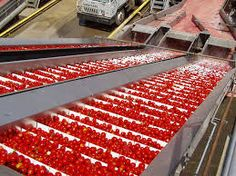 "The report by Expert Market Research entitled ""Tomato Processing Market Report and Forecast 2016-2021"" provides a comprehensive analysis for anyone who plans to foray into the tomato processing market. http://www.expertmarketresearch.com/request?type=report&id=63&flag=B #tomatoprocessing"