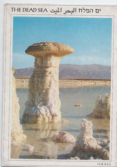 *ISRAEL ~ Dead Sea