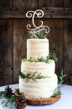 Wedding Cake Rustic, Rustic Cake, Beautiful Wedding Cakes, Elegant Wedding, Wedding Simple, Perfect Wedding, Winter Engagement Party, Engagement Parties, Wedding Engagement