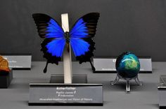 Бабочки и камни - Ярмарка Мастеров - ручная работа, handmade