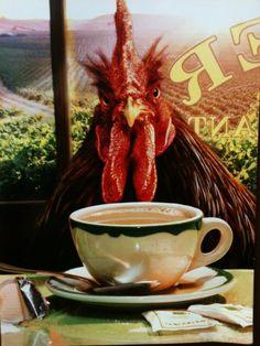 Go away. I haven't had my coffee yet.