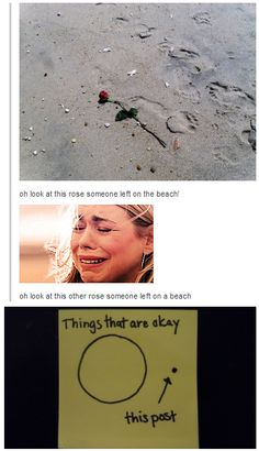 What kind of person would post something like that (goes an sobs on the floor)