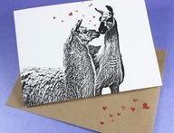 Lots of Llama Love for Valentine's Day.