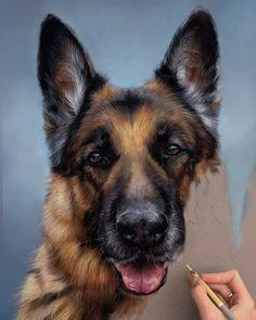Beautiful work by Patricia Otero - Canine & animal Portraits Shared by Veri Apriyatno Artist . Colored Pencil Artwork, Color Pencil Art, Dog Portraits, Portrait Art, Animal Paintings, Animal Drawings, Crayons Pastel, Realistic Drawings, Pastel Art