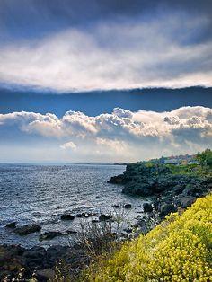 Nuvole sulla scogliera, Nature