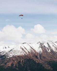 I'm still not sure why I just hang out on the groundBird Ridge, Alaska