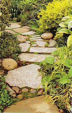 Stones for a walkway. They all don't have to be the same! A real combo. Love it.
