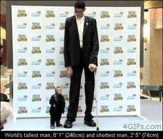 World's tallest and shortest man - Imgur