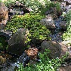 Backyard Stream, Garden Stream, Backyard Water Feature, Ponds Backyard, Backyard Waterfalls, Backyard Patio, Japanese Garden Backyard, Japan Garden, Garden Hose