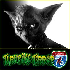 Another one for #caturday ! #Scary76 #halloween #art #critters