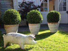 Greenmantle Gardens Barnes Ashburton Garden Design Images, Houzz, Garden Sculpture, Gardens, Outdoor Decor, Garden, Garden Types, Yards, Formal Gardens