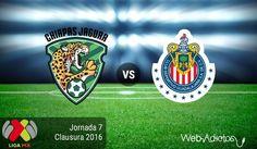 Jaguares vs Chivas, Jornada 7 del Clausura 2016 ¡En vivo por internet! - https://webadictos.com/2016/02/20/jaguares-vs-chivas-clausura-2016/?utm_source=PN&utm_medium=Pinterest&utm_campaign=PN%2Bposts