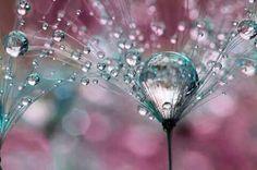 in 22 22 fantastiche fantastiche pioggia 22 pioggia in 22 immagini immagini in immagini pioggia fantastiche wCvOwxq