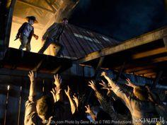 The Walking Dead Season 2 Finale