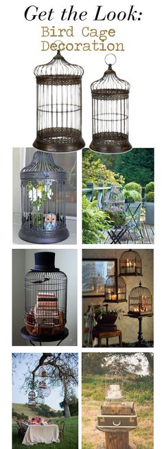 Get the look: bird cage decoration for inside or outside from http://www.copperproper.com/accessories.html
