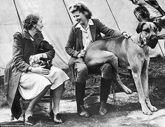 Hangulat a kutyakiállításon  Ilyen volt a kutyakiállítás 100 éve!  #kutya #dog #kutyakiállítás #dogshow #vintage #photo #kutyabarathelyek #kutyabaráthelyek