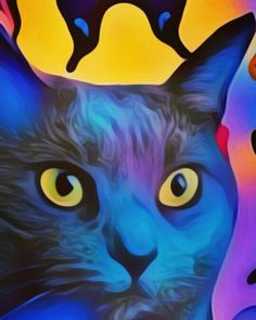 Cat Art Print 8 x10 prints are $10 free shipping in the USA order on Facebook Diane Ortlieb Collage Artist