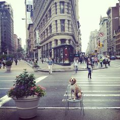 The Flat Iron building in NYC.    Also check out the Maddie the Coonhound project.. very cute! http://maddieonthings.com