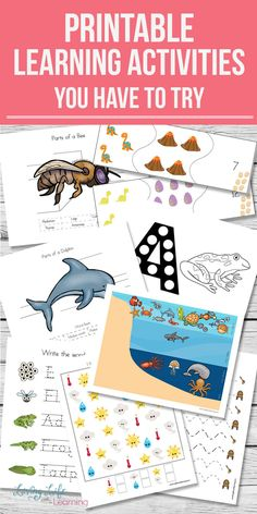 Get a set of wonderful printable learning activities to engage your kids and get them excited about learning with themed science and math printables for preschool to early elementary students.