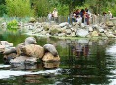 Aqua Zoo Friesland, Leeuwarden