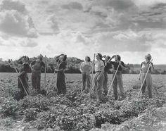 Land Girls 1941