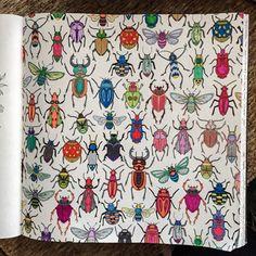 Beetles. Secret Garden. Besouros. Jardim Secreto. Johanna Basford