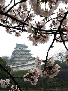 Thought to be the perfect samurai castle. Fun fact: From the outside the main hall looks to have only 5 floors but instead there is a 'secret' floor and a basement. Japanese Culture, Japanese Art, Japanese Things, Himeji Castle, Cherry Blossom Japan, Picture Places, Queen, Vacation Trips, Vacation Ideas