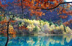 Plitvice Lakes, Jelly fish Lake, Five-Flower Lake, Reed Flute Cave Lake, Laguna Colorada, The Melissani Cave Lake, Lake Retba, Loktak Lake, Tonle Sap Lake, Yeak Loam Lake are the name of unique lakes in many