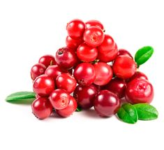 Image result for lingonberry