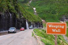 weeping wall glacier national park