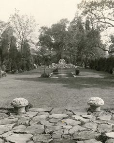 Created in 1914, the evergreen garden was the last area Ely planted at Meadowburn.