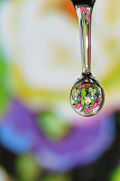 Flower Water | Amazing reflection in a water droplet
