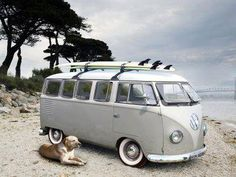 my dog my car and my board!!!!! relax!!!