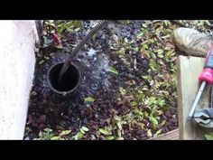 How to clean house drains - Bing Videos   Every house sale NEW OWNER needs to have every drain in the house and the main drain cleaned before moving in.  [Get the other person's junk out.]  This could be a stand-alone business.  Flyers to every real estate office as an suggestion to home buyers. Craigslist homes for sale--send flyers after sold.  Eventually it could become a franchise business.