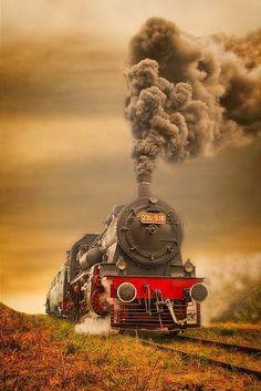 Royal train - Dumitru Doru Photography