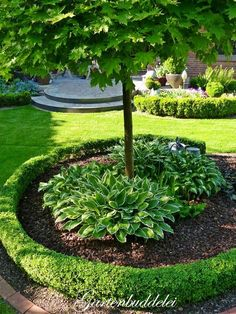 Gartenbuddelei – Garten Design – The World Patio Plants, Landscaping Plants, Front Yard Landscaping, Garden Planters, Landscaping Ideas, Inexpensive Landscaping, Landscaping Software, Small Gardens, Outdoor Gardens
