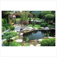 Always wanted a fish pond like this. Not sure they'd surive a VT winter however.