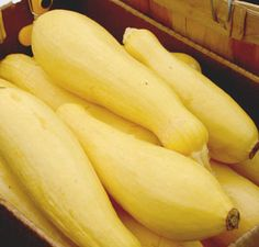 Freezing yellow squash is one of the easiest ways to preserve it for winter Freezing Vegetables, Freezing Fruit, Canning Vegetables, Frozen Vegetables, Freezing Yellow Squash, Canning Yellow Squash, Yellow Summer Squash, Yellow Crookneck Squash, Crookneck Squash Recipes