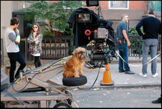 """#charmcolorfully on the set of """"the waiting game"""" starring anna kendrick"""