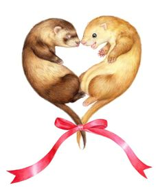 Ferret heart with bow
