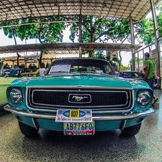 Blue Pony #ford #mustang #ponycar #fordmustang #mustang289 #mugshot #grille #headlights #soloparking #morninautos #chivera #musclecar #americanmuscle (at Hermandad Gallega)