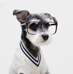 Doggy Style, reportaje fotógrafico de Mr Porter.
